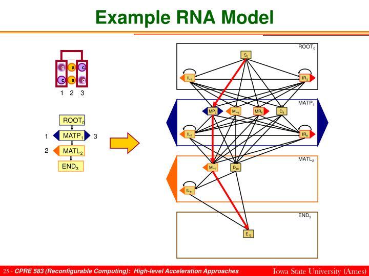 Example RNA Model