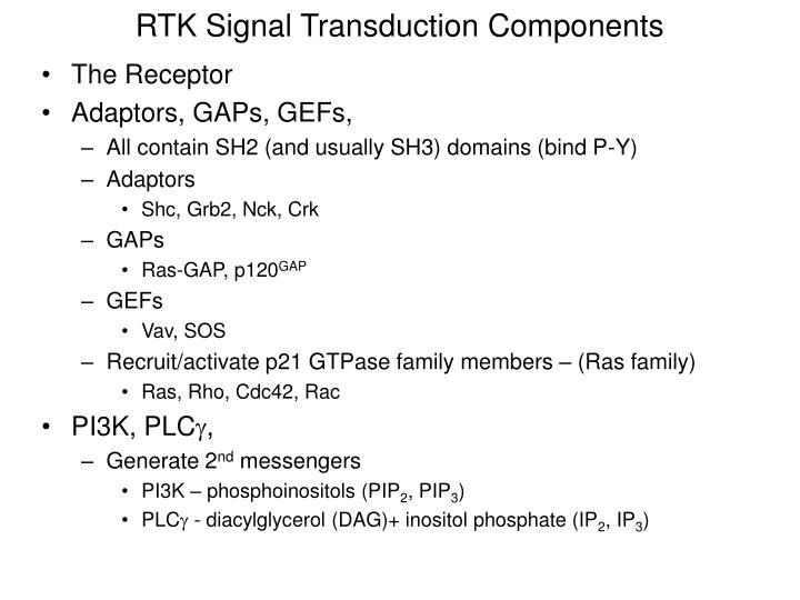 RTK Signal Transduction Components