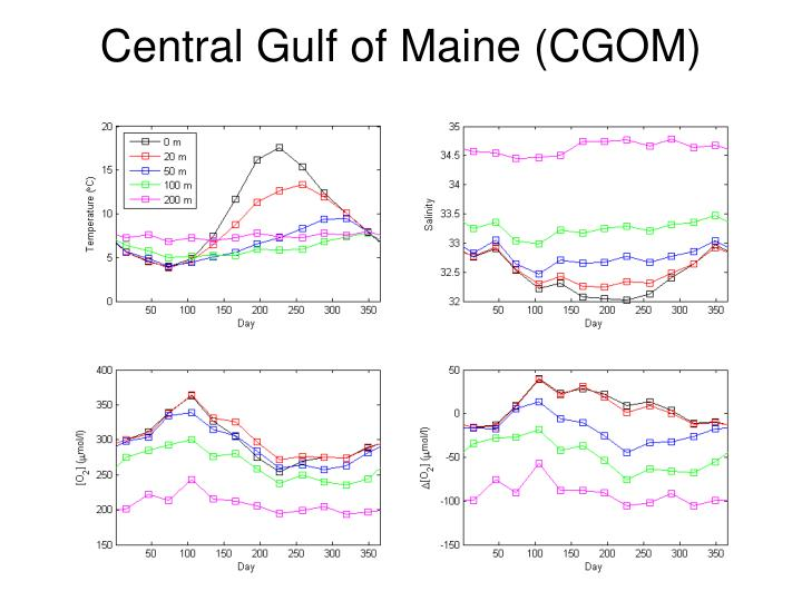 Central Gulf of Maine (CGOM)
