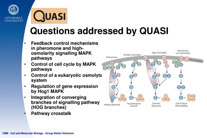 Questions addressed by QUASI