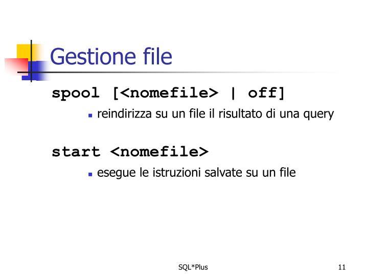 Gestione file