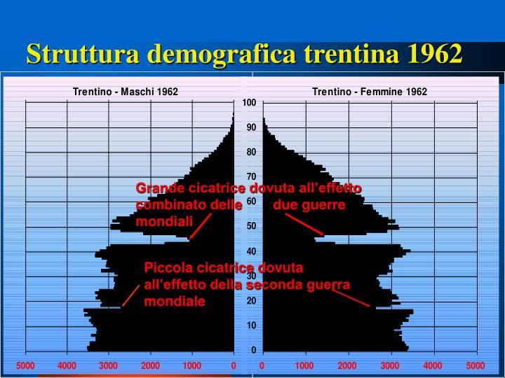 Struttura demografica trentina 1962
