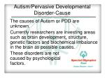autism pervasive developmental disorder cause