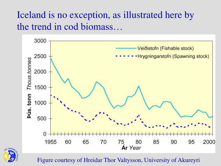 Iceland is no exception as illustrated here by the trend in cod biomass
