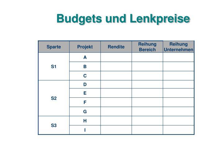 Budgets und Lenkpreise