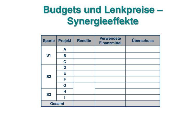 Budgets und Lenkpreise – Synergieeffekte
