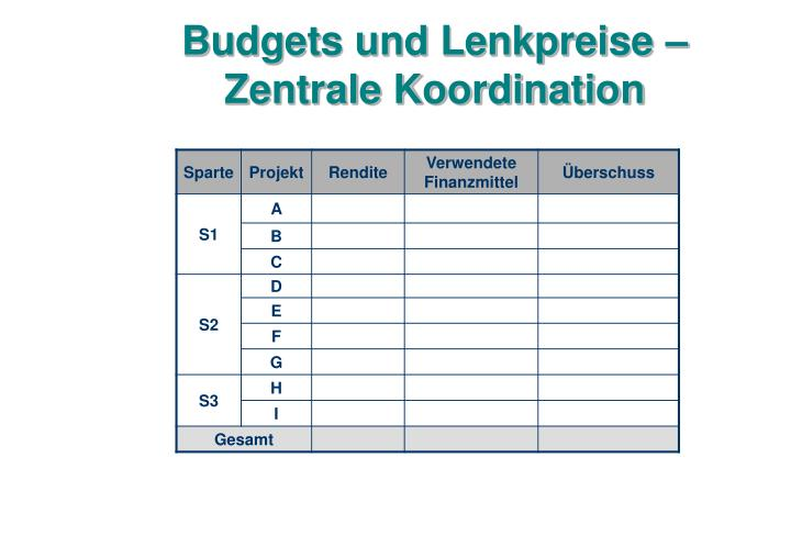 Budgets und Lenkpreise – Zentrale Koordination