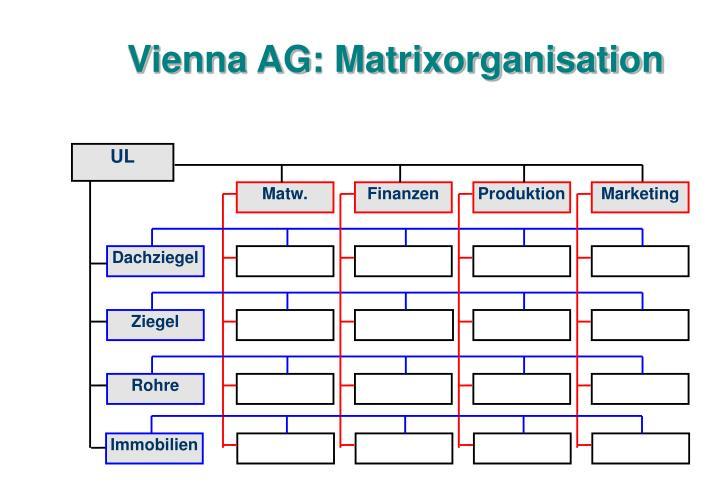 Vienna AG: Matrixorganisation