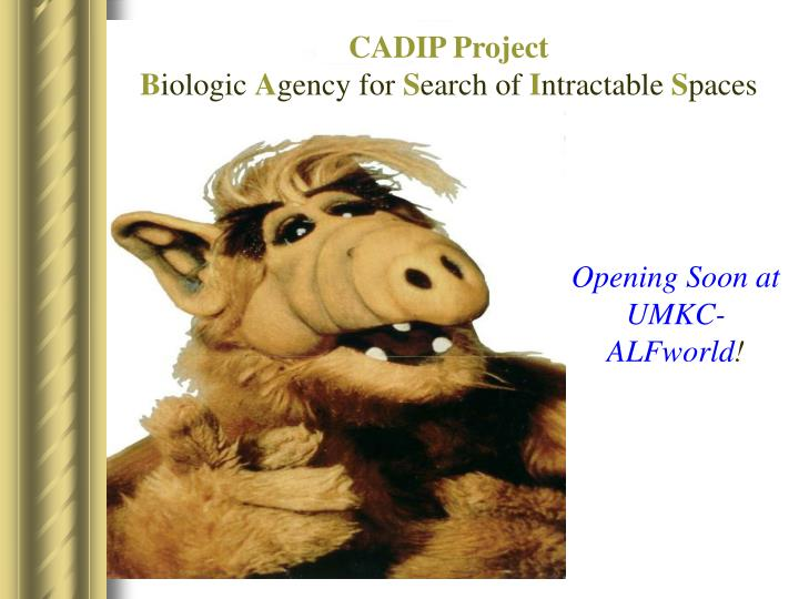 CADIP Project