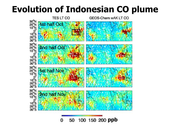 Evolution of Indonesian CO plume