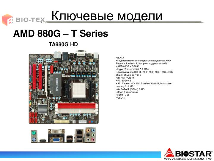 AMD 8