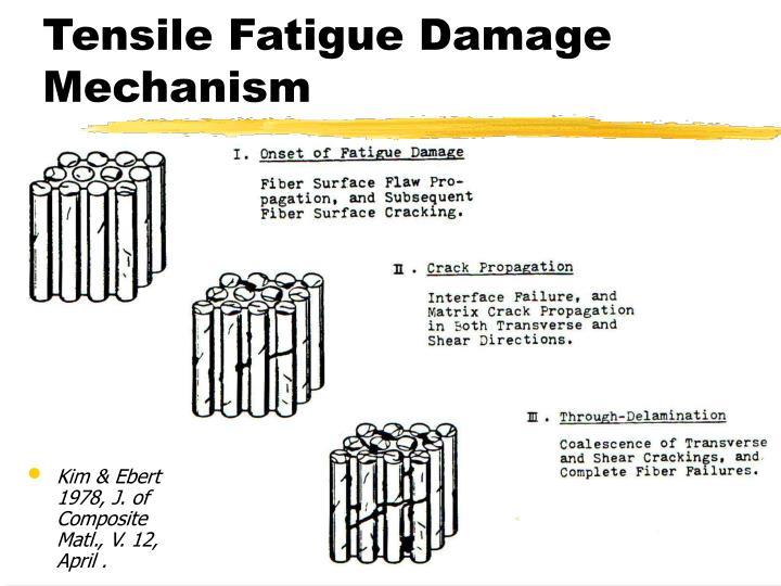 Tensile Fatigue Damage Mechanism