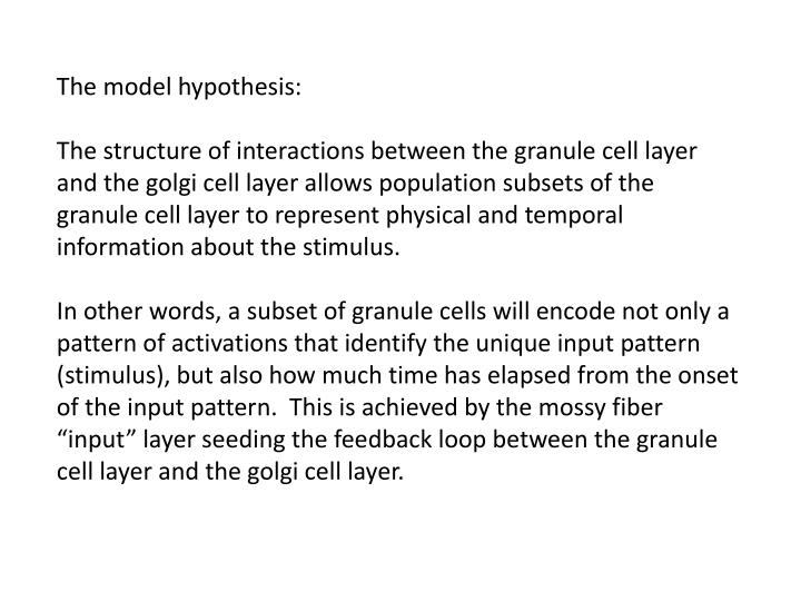 The model hypothesis: