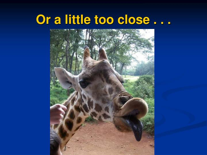 Or a little too close . . .