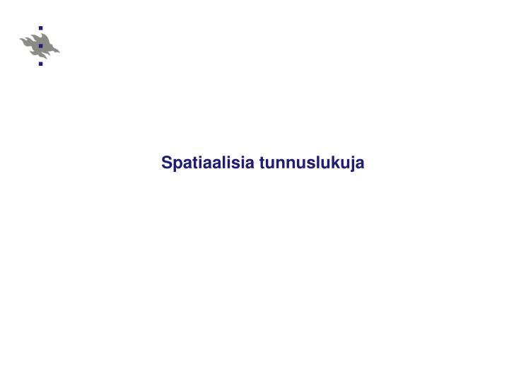 Spatiaalisia tunnuslukuja