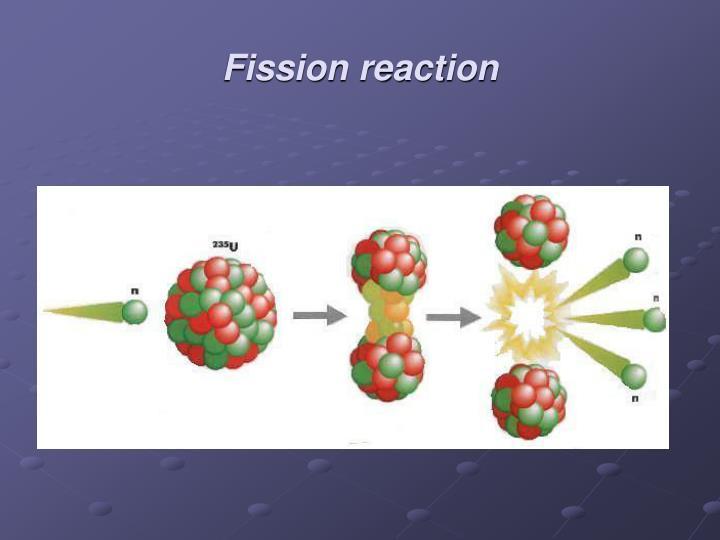 Fission reaction