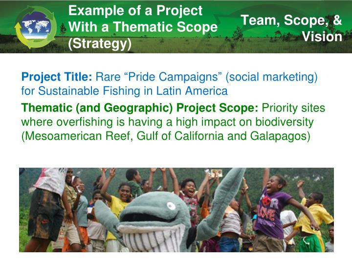 Example of a Project With a Thematic Scope (Strategy)
