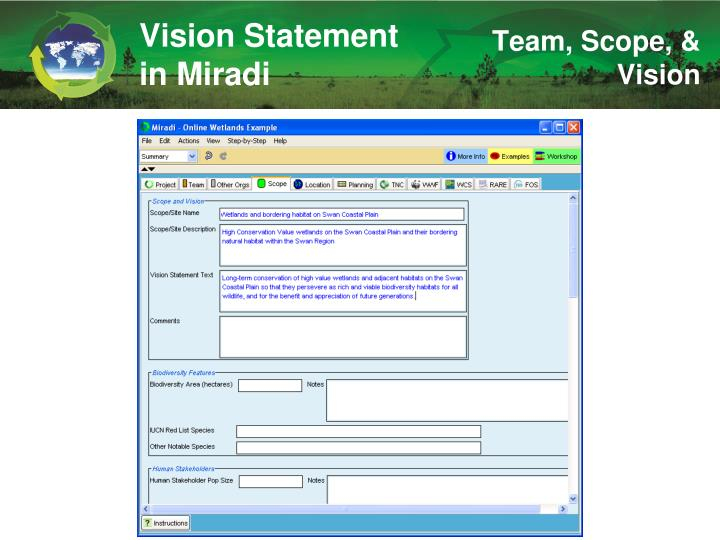 Vision Statement in Miradi