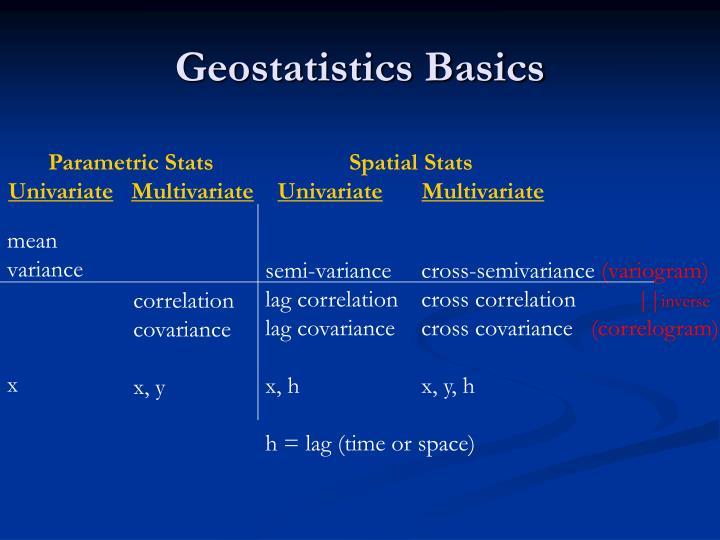 Geostatistics Basics