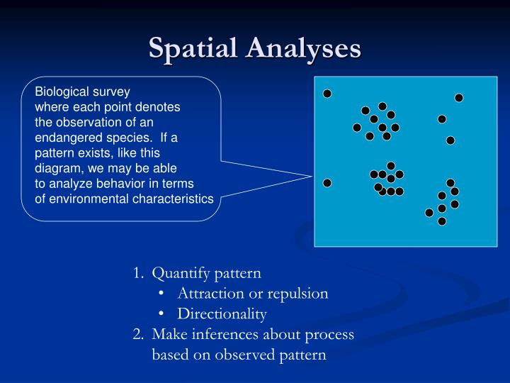 Spatial Analyses