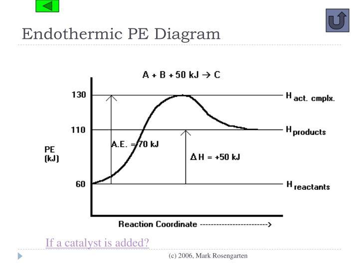 Endothermic PE Diagram