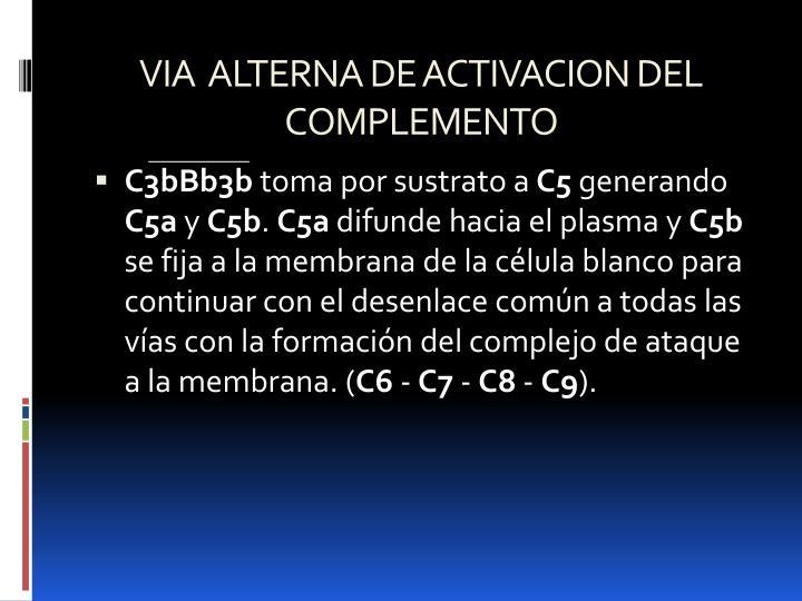 VIA  ALTERNA DE ACTIVACION DEL COMPLEMENTO