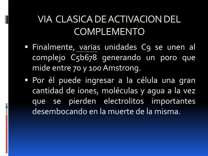 VIA  CLASICA DE ACTIVACION DEL COMPLEMENTO