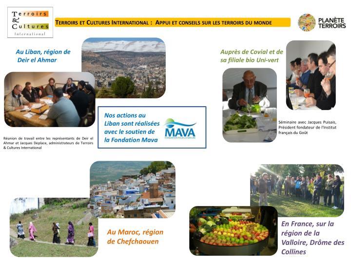 Terroirs et Cultures International :  Appui et conseils sur les terroirs du monde
