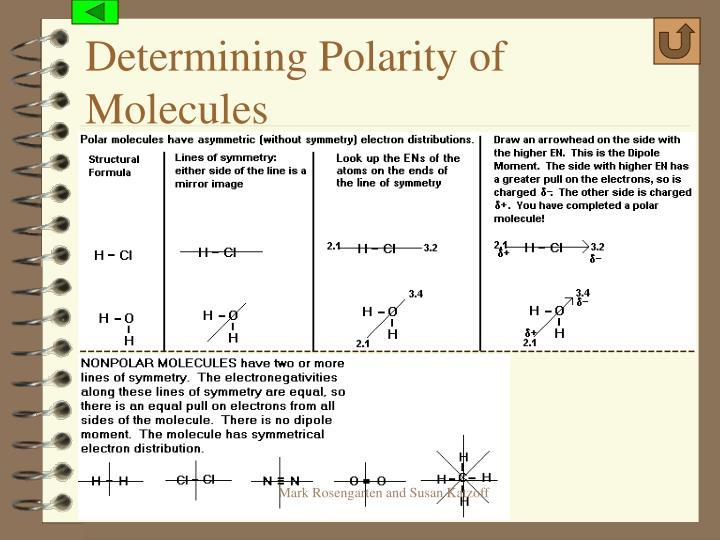 Determining Polarity of