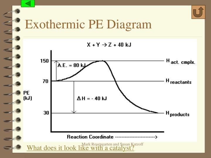 Exothermic PE Diagram