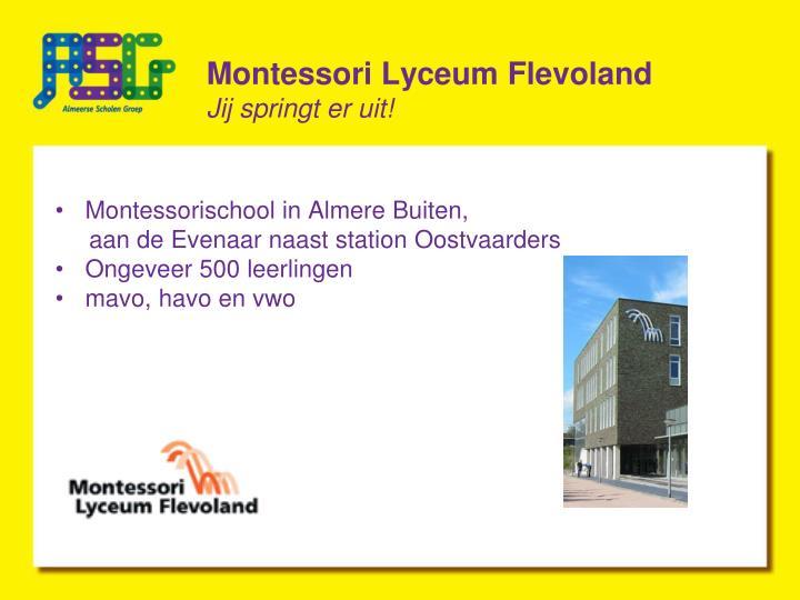 Montessori Lyceum Flevoland