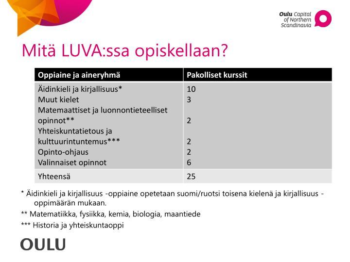 Mitä LUVA:ssa opiskellaan?
