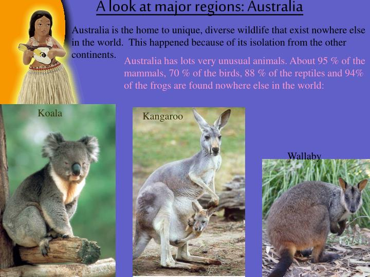 A look at major regions: Australia
