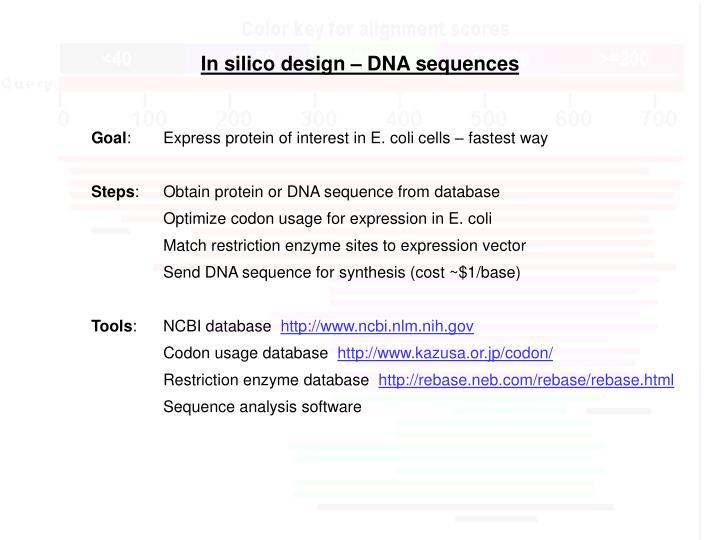 In silico design – DNA sequences