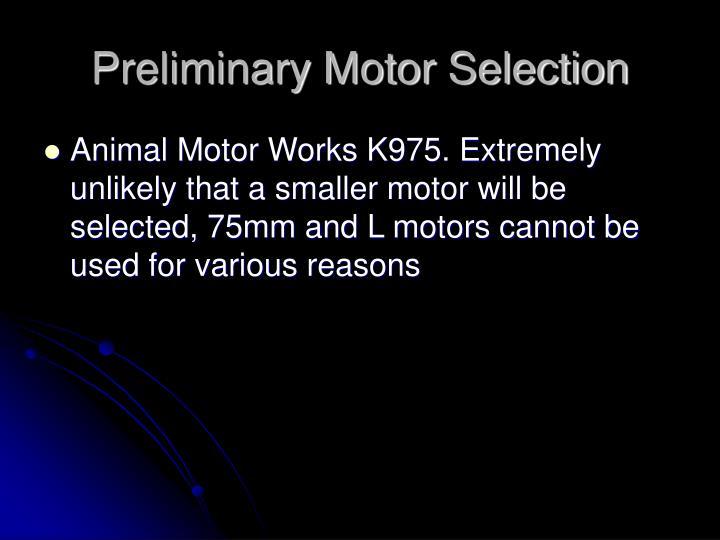 Preliminary Motor Selection