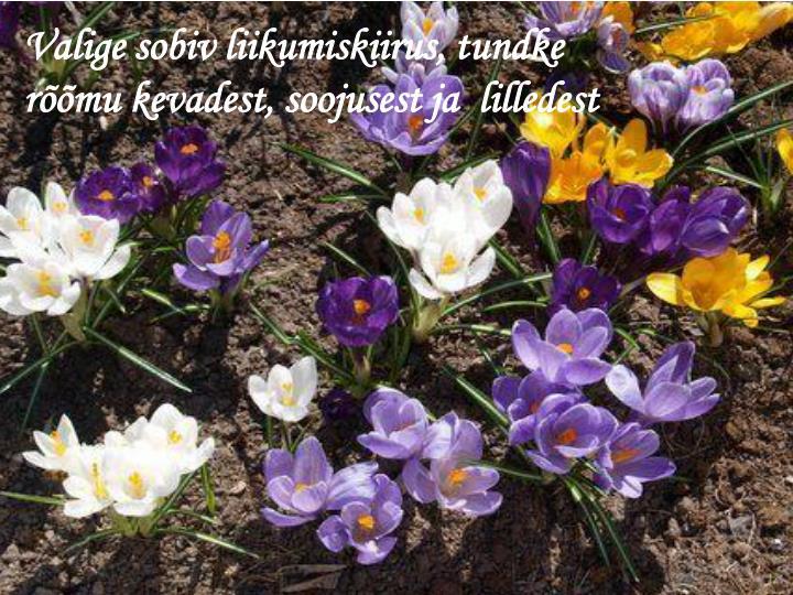 Valige sobiv liikumiskiirus, tundke rõõmu kevadest, soojusest ja  lilledest
