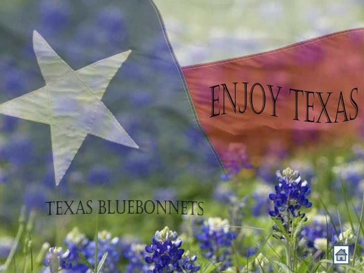 Enjoy Texas