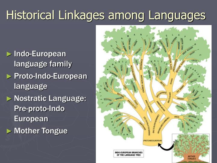 Historical Linkages among Languages