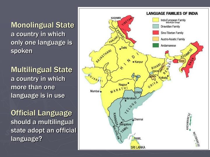 Monolingual State