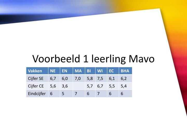 Voorbeeld 1 leerling Mavo