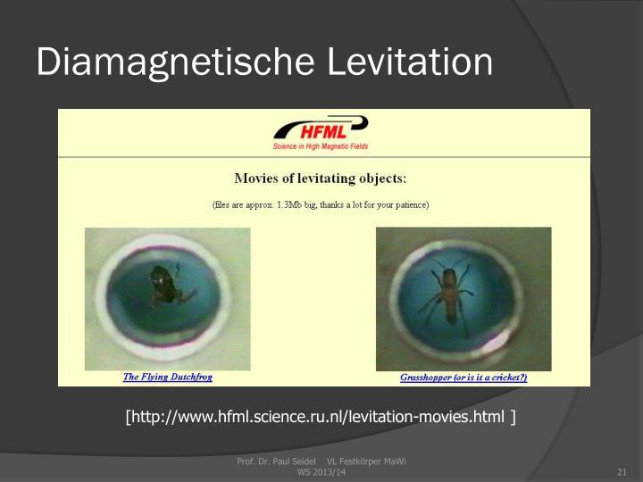 Diamagnetische Levitation