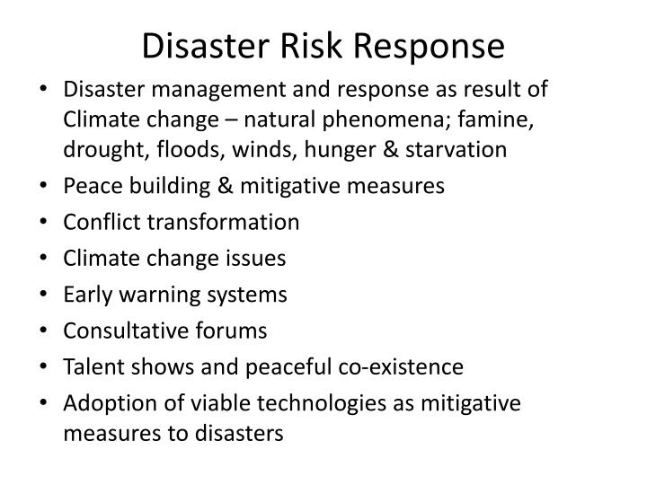 Disaster Risk Response