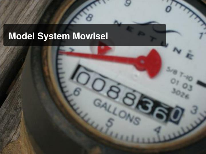 Model System Mowisel