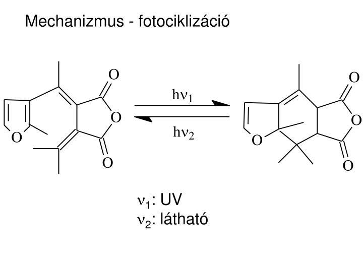 Mechanizmus - fotociklizáció