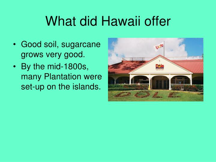What did Hawaii offer