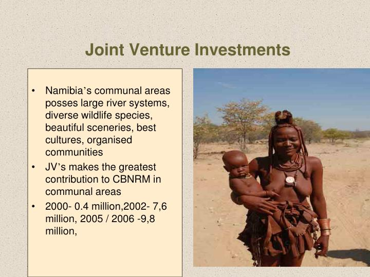 Joint Venture Investments