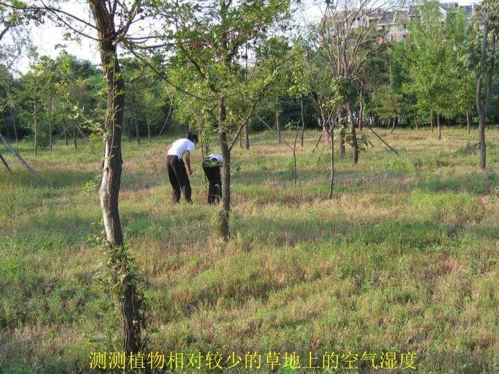 测测植物相对较少的草地上的空气湿度