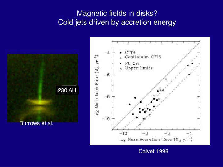 Magnetic fields in disks?
