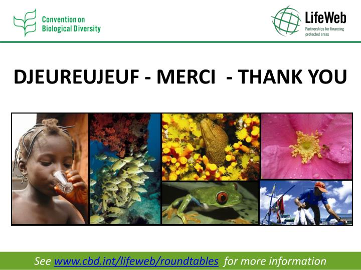 DJEUREUJEUF - MERCI  - THANK YOU