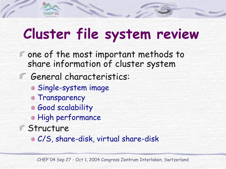 Cluster file system review